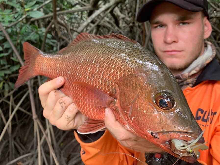 Man wearing orange jacket showing a mangrove jack fish