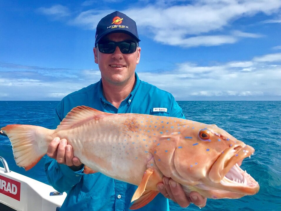 male angler showing his coral trout catch